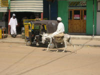 Transport in towns. Donkeys or 3 wheel scooter taxiss
