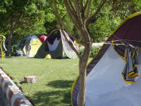 Tents in the park