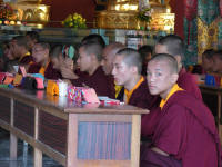 Young monks close up