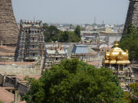 Part of the temple complex. The gopurams at the edges are already covered in matted palm leaves