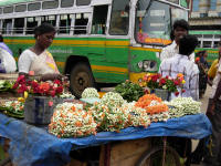 Flower sellers. These are mainly used as hair decoration. Marigolds are normally offered to the god
