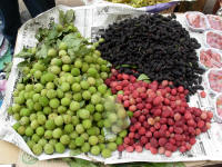 Mullberries and other fruit for sale