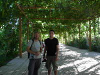 John and Nick in a grape arbour