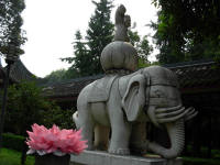Elephant statue at the Wenshu Monastry. The 'flower' in fron is made of serviettes