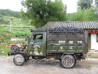 Small truck with tractor engine