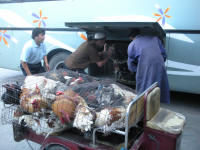 Chickens being loaded into a bus. This is illegal- so? (Pieter)