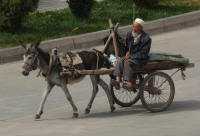 Donkeys and carts are used for anything (john)