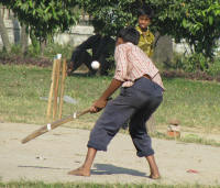 Cricket in a nearby park