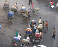 A few cyccle rickshaws clustered together