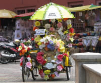 Tourist Rickshaw. The driver covered his face with a newspaper to prevent him being on the photo
