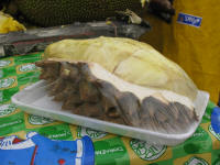 Durian with white flesh and big spikes