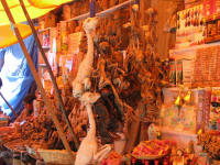 Witches Market with Llama foetus' for sale