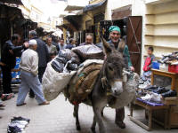 Traditional transport in the narrow street