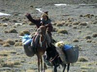 One of the nomads